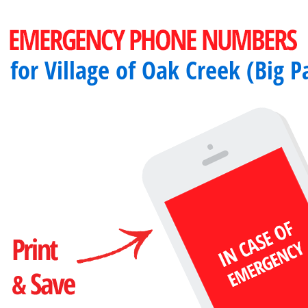 Important emergency numbers in Village of Oak Creek (Big Park), AZ