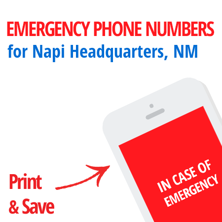 Important emergency numbers in Napi Headquarters, NM